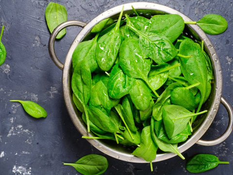 spinach plant-based protein