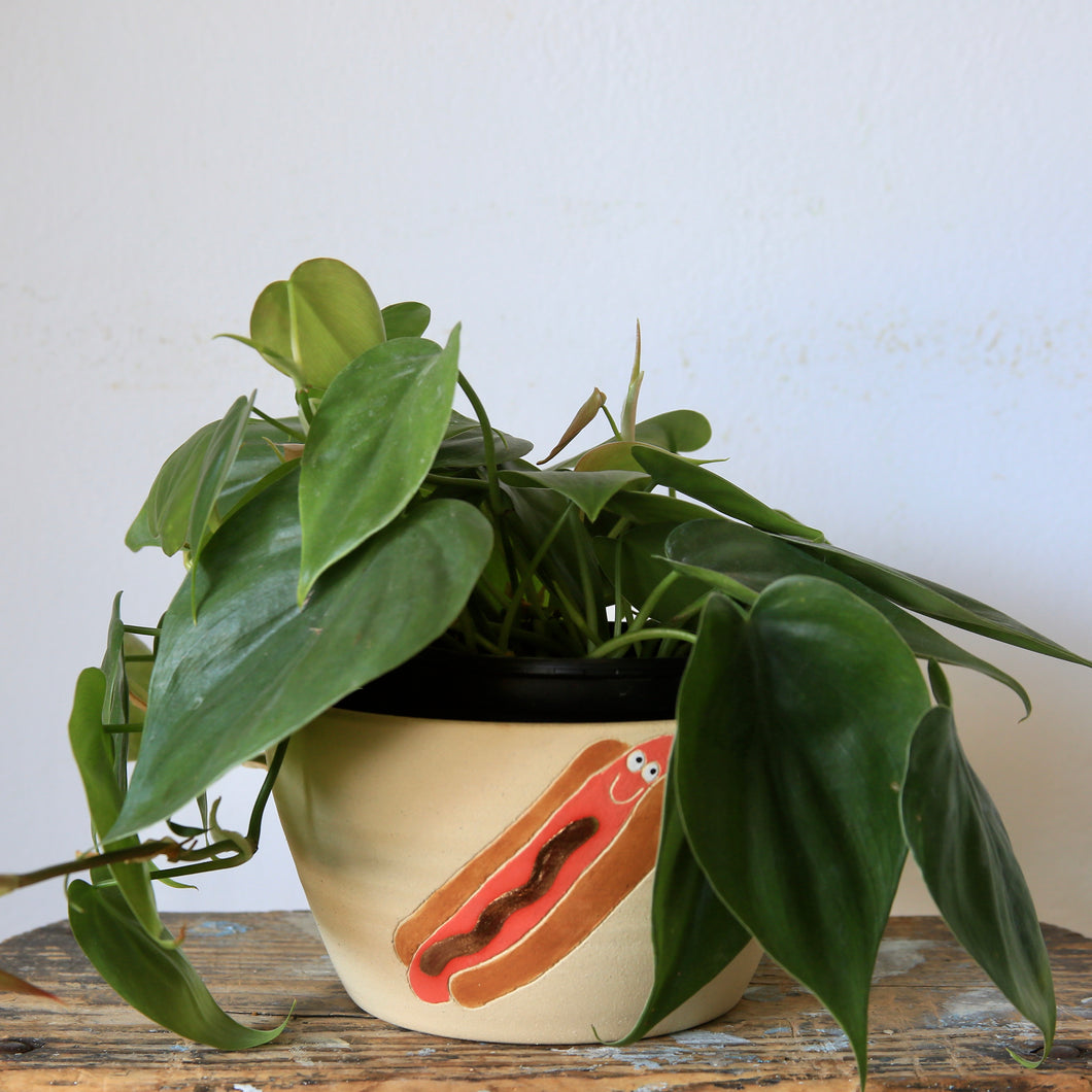 Hot Dog Planter with Gold