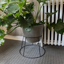 Filli Planter and Stand