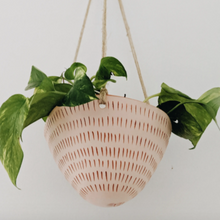 Dash Hanging Planter