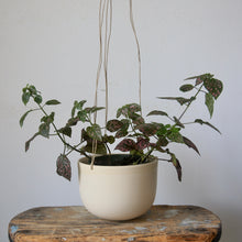 Medium Hanging Planter by CGCeramics