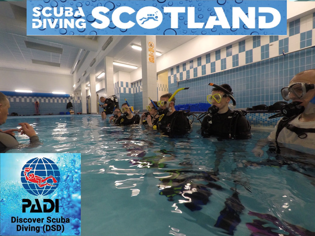 PADI Discover Scuba Diving (DSD) Session - Holyrood Pool Wednesday 13th Feb 2019.