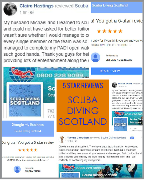 Five 5 Star Reviews in 24 hours for SCUBA DIVING SCOTLAND!