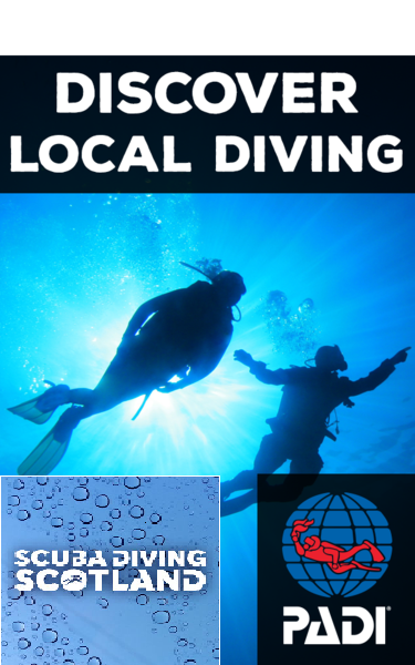 Available Diving this Saturday 18th May 2019