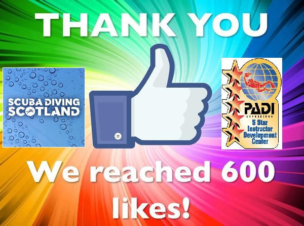600+ Facebook Likes! THANK YOU!