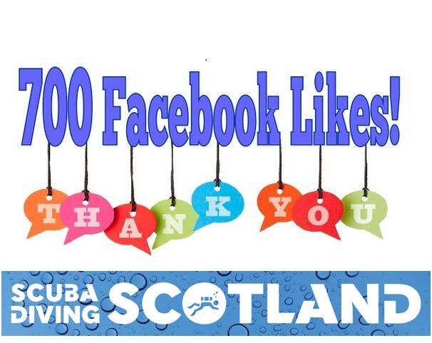 700 Facebook Likes! THANK YOU!