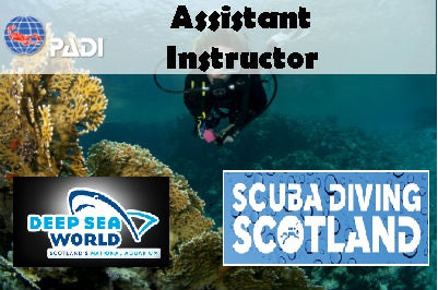 Deep Sea World - PADI Assistant Instructor Course August 2017