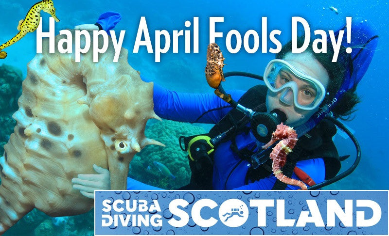 Happy April Fools Day from everyone at SCUBA DIVING SCOTLAND!