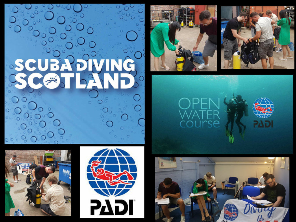 What a great start to the PADI Open Water July 2018 course
