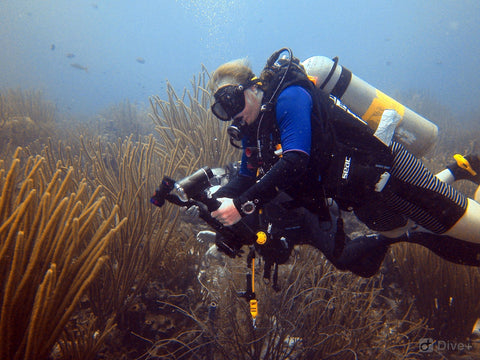 SCUBA DIVING SCOTLAND - Meet The Dive Team Profile Cheryl Woods