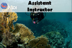 PADI AI Assistant Instructor Course
