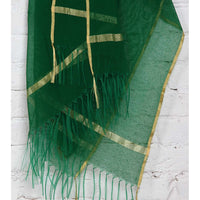 Green Raw Silk Dupatta - rang