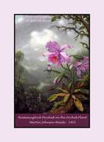Hummingbird Perched on the Orchid Plant painted by Martin Johnson Heade Premium Poster