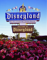 Disneyland sign in California print