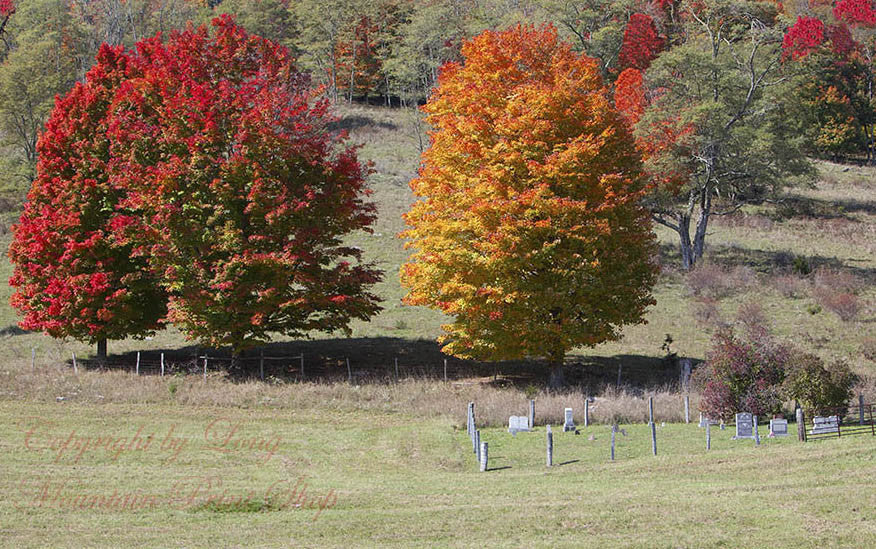 Family Cemetery amid Fall Colors on the Mountain Top