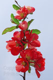 Red Flowering Quince Against Light Blue Sky Art Print