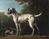 A Gray Spotted Hound by John Wootten