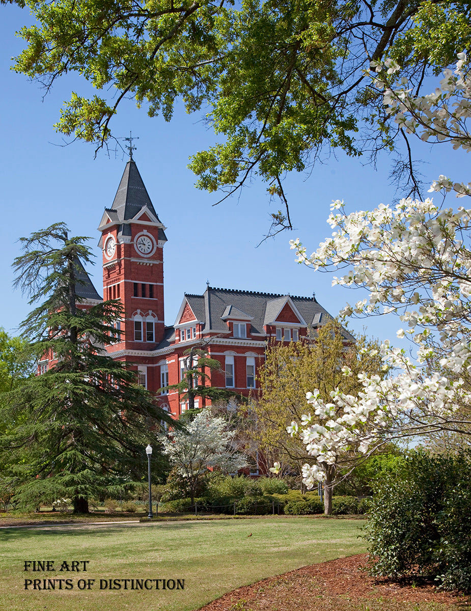 Samford Hall in Springtime at Auburn University art print