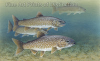 Lake Trout by Tim Knepp