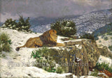 Lion in the Snow by Geza Vastagh
