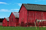 Tobacco Barns Three in a Row