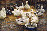 Ducks in the Straw by Alexander Koester