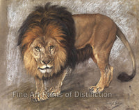 A Border Lion by Geza Vastagh