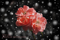 Rose Stem with Coral Pink Blooms in the Swirling Snow Botanical Print