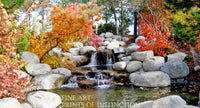 Babbling Brook in a Fall Landscape Scenic art print