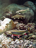 Hines, Bob - Brook Trout Group of Three Fine Art Print