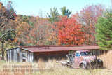Studebaker Truck Picking up the Chickens Fine Art Print