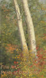 Birch Trees in Autumn by Frederic Edwin Church