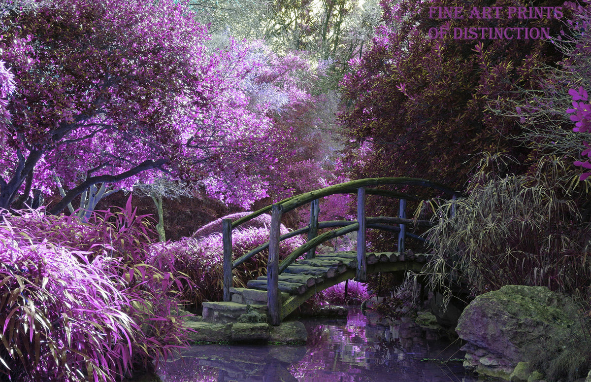 Ethereal Purples and Small Walking Bridge Premium Landscape Print