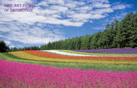 Colorful Rows of Flowers in a Scenic Landscape Premium Print