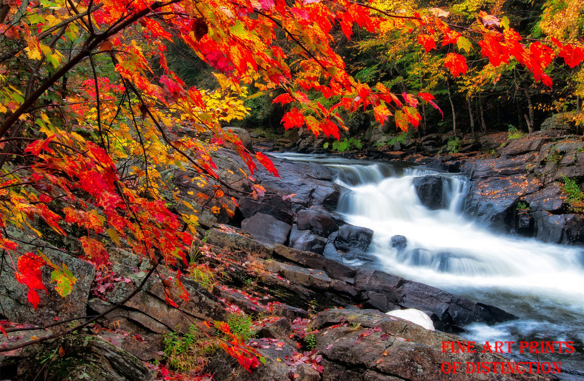 A Fall Landscape with Rocks and Waterfalls Premium Print
