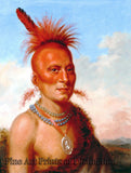 King, Charles Bird - Sharitahrish Native American Portrait
