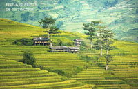 Steeply Terraced Farm in China Premium Art Print