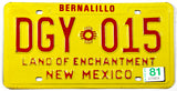 A 1981 New Mexico passenger car license plate in excellent condition