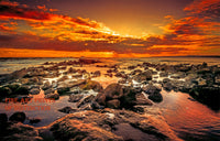 Rocky Beach with an Orange Sunset Premium Quality Print