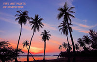 Tropical Landscape with Palm Trees and a Beautiful Sunset Premium Print