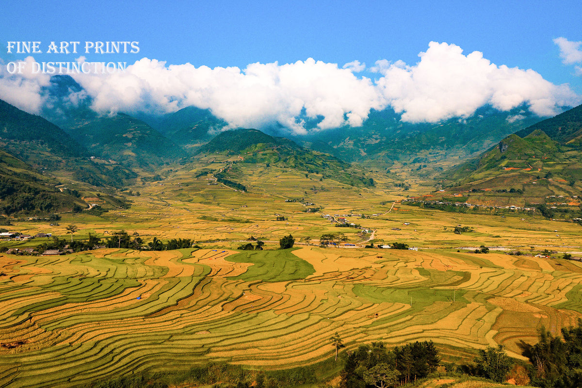 Chinese Farm with Terraced Fields with the Clouds Premium Art Print