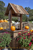 Fall Pumpkins on the Well with Mums and Hay Bales