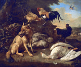 Still Life with Animals painted by Melchior d'Hondecoeter