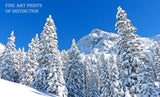 Winter Landscape with Snow Covered Pines and Mountain Peaks Art Print