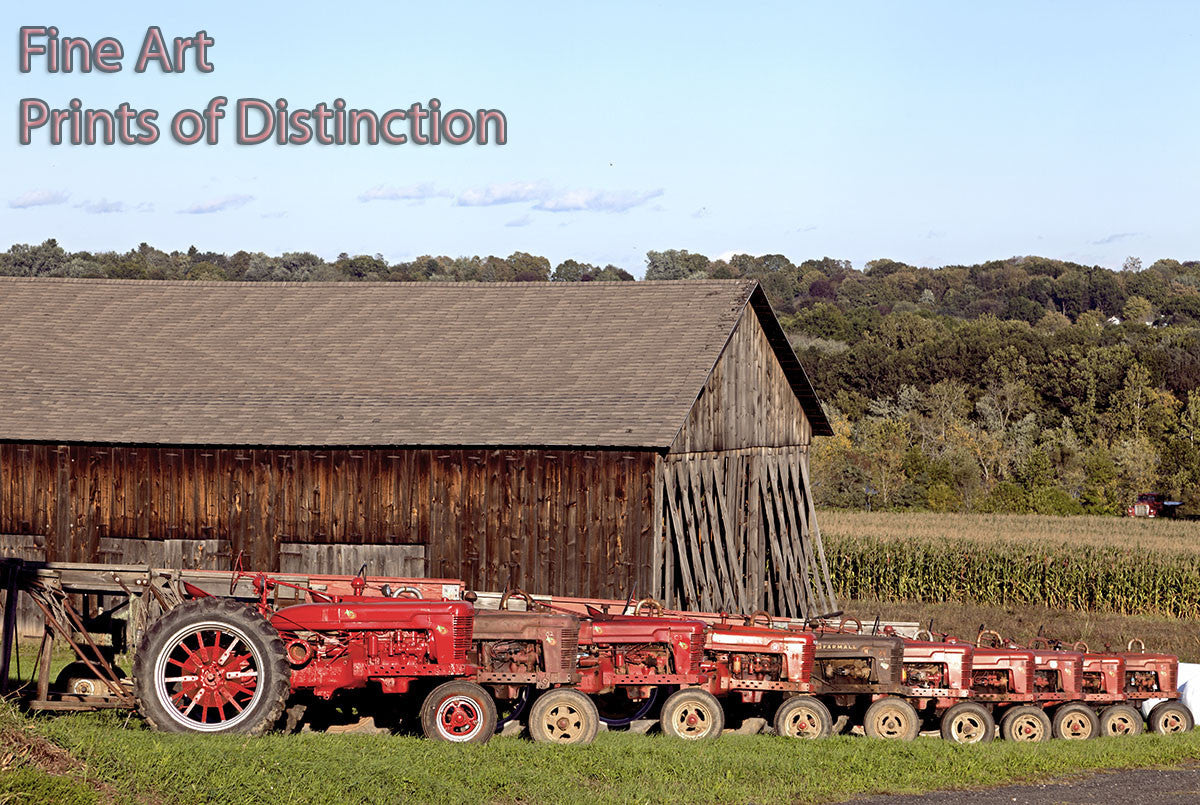 Red Tractors all in a Row Country Decor Print