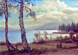 Lake Tahoe in California by Albert Bierstadt