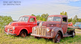 1947 Ford Pickup and Antique Dodge Truck Art Print