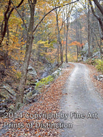 Country Road with Fall Colors behind Seneca Rocks Art Print