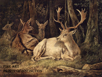 Dammwild or Fallow Deer by the German artist August Schleich