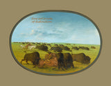 Buffalo Chase with Accidents by American artist George Catlin Premium Western Print
